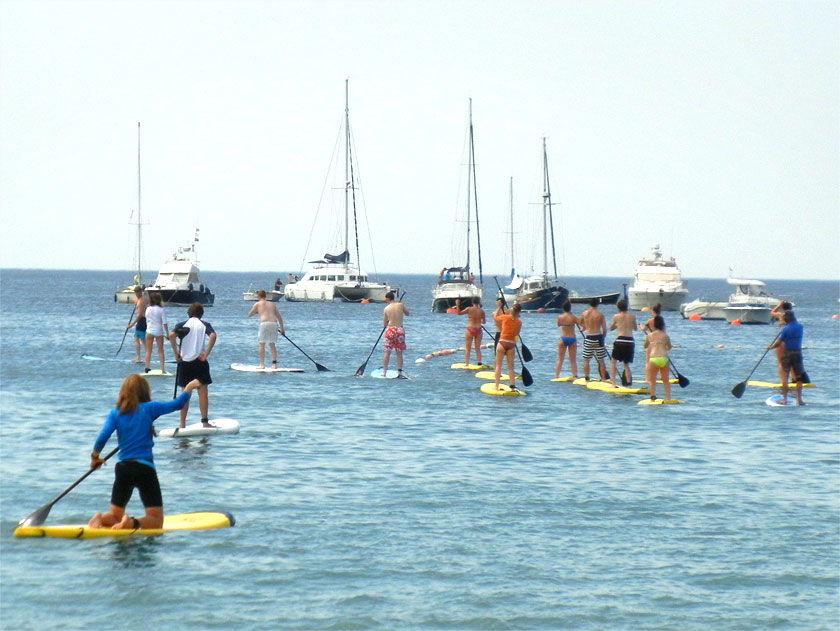 Stand Up Paddle - Adults